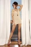 Junge dünne sexy Frau in der braunen Strickjacke gegen das Fenster Stockfotografie