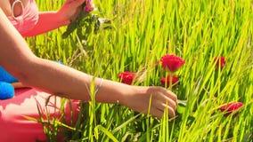 Junge Dame in der Blumengirlande sitzt unter grünem Reisfeld stock video footage