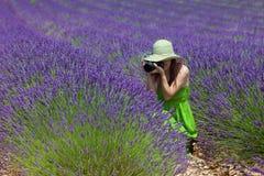 Junge Dame, die auf dem Lavendelgebiet in Porvence, Frankreich fotografiert. Stockfoto