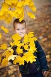 Junge in den Blättern Stockbild