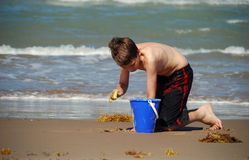 Junge, der auf dem Strand spielt Stockfotos
