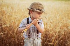Junge, der auf ein Feld des Roggens geht Stockbilder
