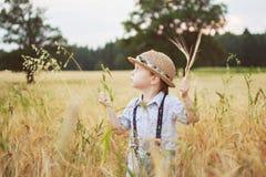 Junge, der auf ein Feld des Roggens geht Stockfoto