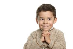 Junge in der Brown-Strickjacke Stockbilder