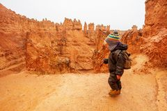 Junge, der in Bryce-Schlucht Nationalpark, Utah, USA wandert lizenzfreie stockfotos