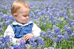 Junge, der in den Blumen sitzt Stockbild