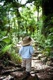 Junge, der in den Wald geht lizenzfreie stockbilder