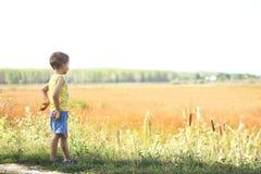 Junge, der in der Natur schaut Lizenzfreie Stockbilder