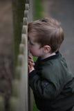Junge, der durch Zaun schaut lizenzfreies stockfoto