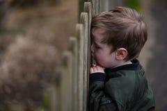 Junge, der durch Zaun schaut stockfotos