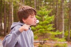 Junge, der Eibisch isst Stockbild