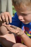 Junge, der eine Endlosschraube auf seiner Hand betrachtet lizenzfreie stockbilder