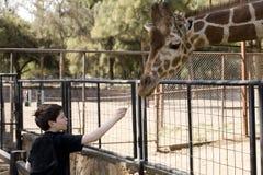 Junge, der eine Giraffe speist Lizenzfreie Stockfotos