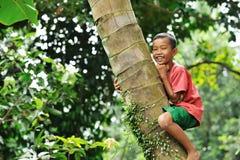Junge, der einen Baum steigt stockfotografie