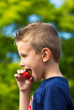 Junge, der Erdbeere isst Stockbild