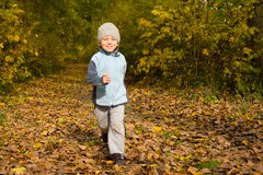 Junge, der in Herbstlandschaft läuft Lizenzfreie Stockfotos