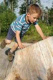Junge, der im Wald spielt Stockfoto