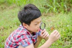 Junge, der Lupe zum Beobachten des Schmetterlinges verwendet lizenzfreie stockbilder