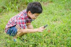 Junge, der Lupe zum Beobachten des Schmetterlinges verwendet stockbild