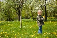 Junge, der mit Blumen spielt Stockbilder