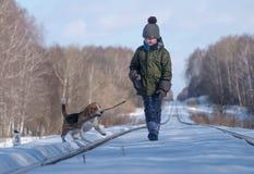 Junge, der mit einem Spürhund geht Stockbild