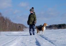 Junge, der mit einem Spürhund geht Lizenzfreies Stockfoto