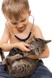 Junge, der mit Katze und Stethoskop spielt Lizenzfreie Stockfotos