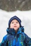 Junge, der oben im Wunder dem Schnee-Fallen betrachtet Lizenzfreies Stockfoto