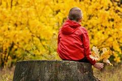 Junge in der roten Jacke, die auf einem Baumstumpf in der Herbstwaldrückseitenansicht sitzt Stockfoto