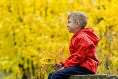 Junge in der roten Jacke, die auf einem Baumstumpf in der Herbstwaldseitenansicht sitzt Lizenzfreies Stockbild