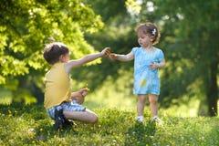 Junge, der seiner Schwester Blume gibt stockfoto
