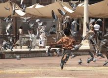 Junge, der Tauben zerstreut Stockfotografie