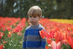 Junge, der traurig in einem Tulpenfeld schmollt und schaut Lizenzfreies Stockbild
