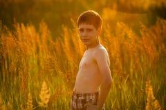 Junge, der unter hohem Gras steht Stockbilder