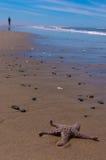 Junge, der weg von Starfish auf Strand geht Lizenzfreie Stockfotografie