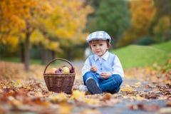 Junge in einem Park mit Blättern und Korb von Früchten Stockbild