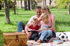 Junge entspannende Familie beim Haben eines Picknicks Stockbilder
