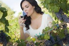 Junge erwachsene Frau, die einem Glas an Wein im Weinberg nippt Stockbilder