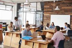 Junge erwachsene Kollegen, die in einem Bürogroßraum arbeiten lizenzfreies stockbild