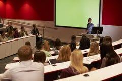 Junge erwachsene Studenten an einer Universität konferieren, hintere Ansicht lizenzfreies stockbild