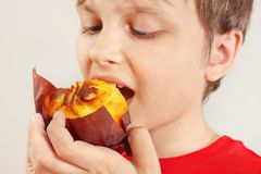 Junge essen das appetitanregende Muffin auf weißem Hintergrundabschluß oben stockfotos