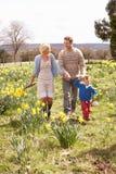 Junge Familie, die unter Frühlings-Narzissen geht Stockbild