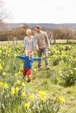 Junge Familie, die unter Frühlings-Narzissen geht Stockfotos