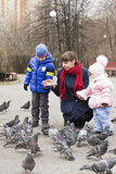 Junge Familie mit Kindern ziehen Tauben im Park ein Lizenzfreies Stockfoto