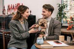Junge Familie scherzt über ihren Hund stockfotos