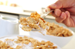 Junge Fleisch fressende Hafermehlgetreide mit Jogurt Stockfotografie