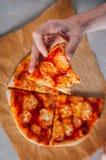 Junge Fleisch fressende Pizza Margherita Lizenzfreie Stockbilder