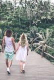 Junge Flitterwochenpaare, die tief auf der Brücke im Dschungel aufwerfen Regenwald von Bali-Insel Romantisches Trieb indonesien stockfotografie