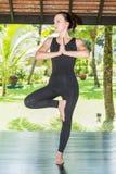 Junge Frau übt Yoga und pilates auf Natur Lizenzfreies Stockfoto