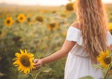 Junge Frau auf einem Gebiet der Sonnenblumen Sonnenunterganglicht auf dem Gebiet von Sonnenblumen Lizenzfreie Stockfotos